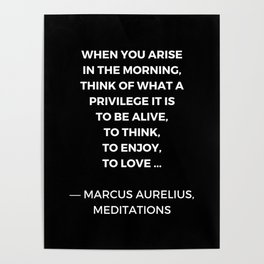 Stoic Wisdom Quotes - Marcus Aurelius Meditations - What a privilege it is to be alive Poster