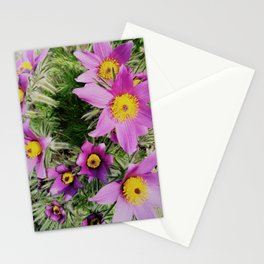 pasque-flower Stationery Cards