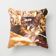 Cat in the shadows Throw Pillow