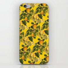 Richmond Gold iPhone & iPod Skin