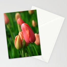 Romantic Tulips of Keukenhof Stationery Cards
