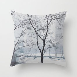 Winter View Throw Pillow