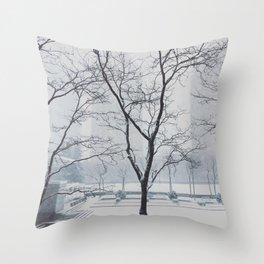 Winter View Throw Pillow
