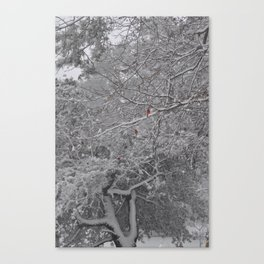 Three Cardinals in the Snow Canvas Print