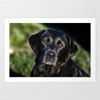 labrador Art Prints featuring Labrador by The Time Catcher