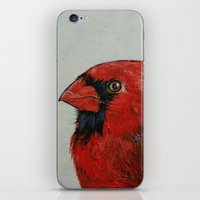 cardinal iPhone & iPod Skins featuring Cardinal by Michael Creese