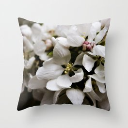 Apple Blossoms 5 Throw Pillow