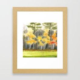 Briars Golf Course, 2nd Hole Green, Nov 2013 Framed Art Print