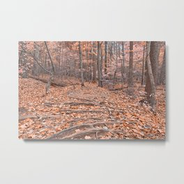 Pastel Fantasy Forest Trail Metal Print