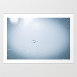 FlyAway Art Print