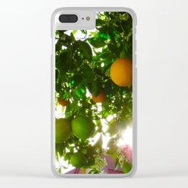 Backyard Citrus Fruit Tree Clear iPhone Case