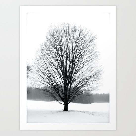 A Cold Winters Fog Art Print