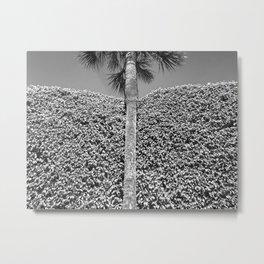 landscape architecture no.2 Metal Print