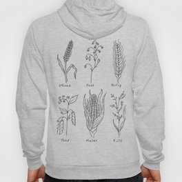 Grains and Cereal Plants Study Design Hoody