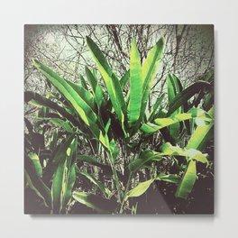 Waghai Botanical Gardens 523 Metal Print