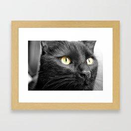 Jet Black Framed Art Print