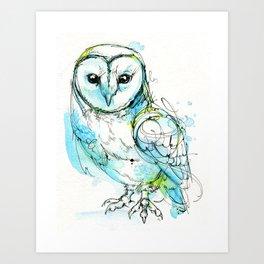 Aqua Tyto Owl Art Print