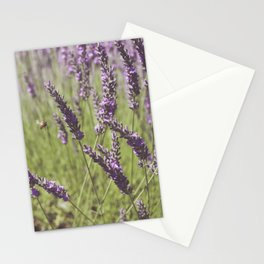 Lavender Floral Photography Stationery Cards