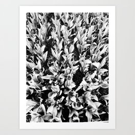   alienation through agglomeration   Art Print