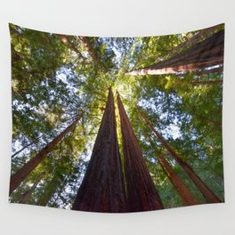 California Redwoods Wall Tapestry
