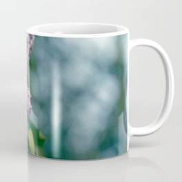 Syringa vulgaris lilac Coffee Mug