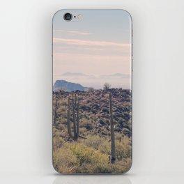 Desert Escape iPhone Skin