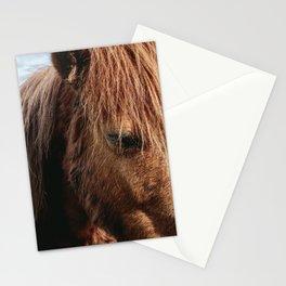 Brooding Pony Stationery Cards
