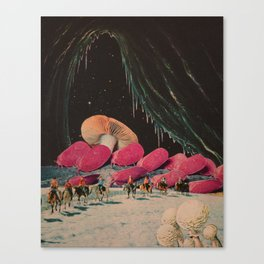 It's a Ruse Canvas Print