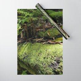 Rainforest Ferns & Moss Wrapping Paper