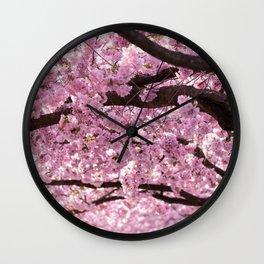 Cherry Blossom Trees Wall Clock