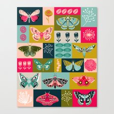 Lepidoptery tiles by Andrea Lauren  Canvas Print