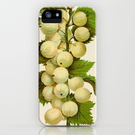 Canadian Horticulturalist 1888-96 - Downing Gooseberries iPhone Case