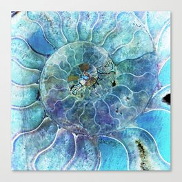Aqua seashell - mother of pearl - Beautiful backdrop Canvas Print