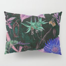 Botanical Study #3, Vintage Botanical Illustration Collage Art Pillow Sham