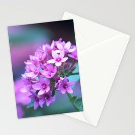 Longwood Gardens Autumn Series 311 Stationery Cards