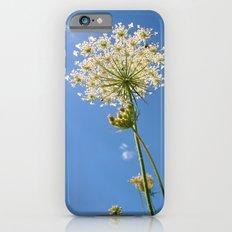 Queen Anne's Portrait iPhone 6 Slim Case