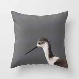 Black winged stilt Throw Pillow