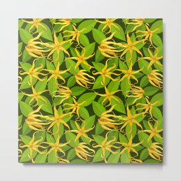 Ylang Ylang Exotic Scented Flowers and Leaves Pattern Metal Print
