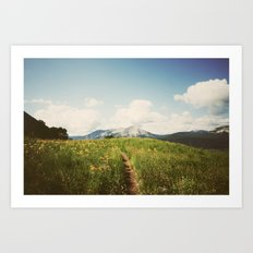 Summer Wander Art Print