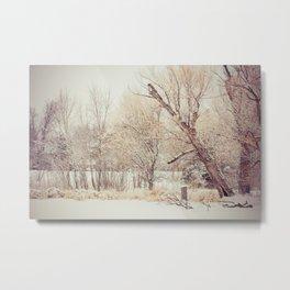 Winter Wonderland Number 4 Metal Print