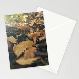 Mushrooms in Dappled Sunlight Stationery Cards