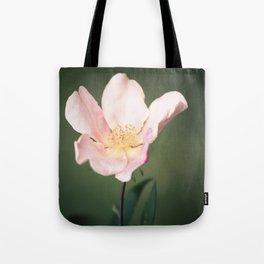 October flower Tote Bag