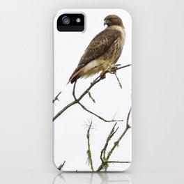 A Lofty Perch iPhone Case
