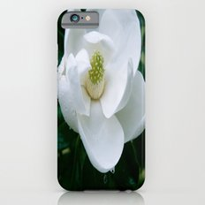 Magnolia Flower iPhone 6s Slim Case
