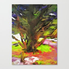 Tree with the Open Arms Canvas Print