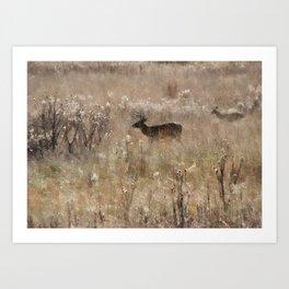 Autumn - Deer in Tennessee Art Print