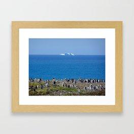 King Penguins in front of an iceberg Framed Art Print