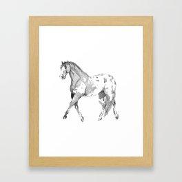 Dotpoloosa Framed Art Print