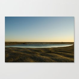 Revealed Canvas Print