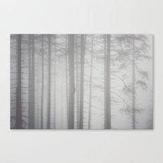 Shades of fog Canvas Print